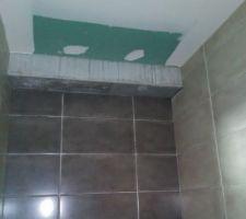 Faïences salle d'eau. beige dans la longueur et gris dans la largeur + carreaux 45 * 45 au sol blanc.