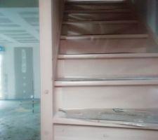 Mon escalier (en hêtre),de  Debret-Escalier(62)