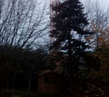 Grue au dessus jardin