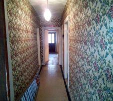 Couloir ,à gauche chambre et sdb plus loin, a droite cuisine( cloison va tomber), au bout le salon