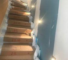 Spots escalier étage