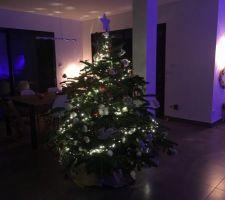 Déco de Noël côté entrée : le sapin de nuit
