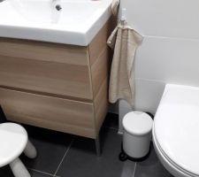 La salle de bain des invités meuble ikea