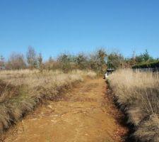 Terrassement chemin d'accès