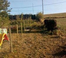 Futur chemin, tout d'abord barré par des piquets bois (pour les chiens !) afin de créer le chemin d'accès.