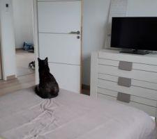 Le lit est enfin à sa place dans la chambre parentale !