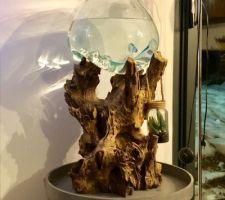 Aquarium racine de TECK Indonésie avec verre soufflé