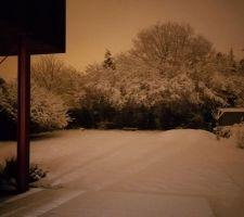 Neige by night