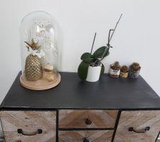 Composition sousglobe sur  meuble d'entrée, petits cactus, et orchidée (qui tire 1 peu la tête...)