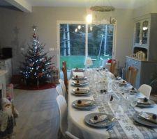Premier Noel dans notre maison