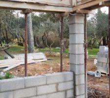 Vue du poolhouse sur les oliviers