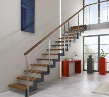 Style escalier 1 - limon en zigzag et pas de contremarches