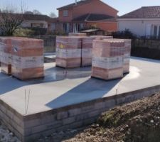 1er livraison des briques