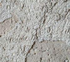 Mur de refend avec salpêtre (joints en terre humides de l'autre côté)
