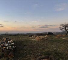 Vue terrain après nettoyage abattage de 7 boulots / 6 arbres fruitiers et une dizaine de sapins. Nous avons conservé le pommier qui ne gênera pas l'accès et la construction