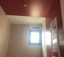 03.03.19 peinture salle de bain terminé  Foncé sur photo mais c est framboise clair