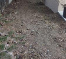 Préparation terrain pour plantation gazon
