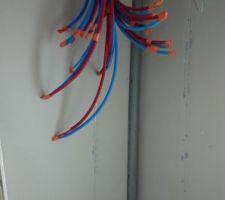 Tout arrive dans le cellier. Entre l'eau, l?électricité et les câbles réseaux ça fait du monde...