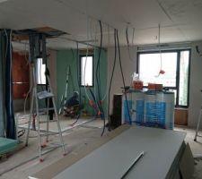 Les plaquistes roumains en plein travail