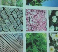 Projet jardin.