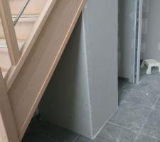De quoi faire un petit rangement sous escalier