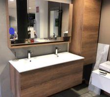 Meubles de salle de bain avec double vasque miroir et rangements avec également le meuble colonne