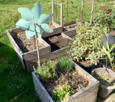 Vieillissement des carrés potagers après un hiver