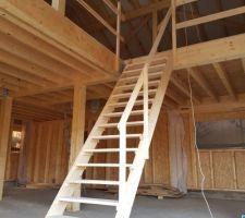 Création de l'escalier de chantier et garde corps vide sur séjour