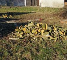 Du bon bois de chauffage pour les voisins!