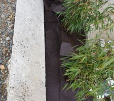 Bambous Étape 2:  Pose dun géotextile afin d'éviter l'apparition de mauvaises herbes mais aussi pour éviter que les pierres ne s'enfoncent dans la terre.