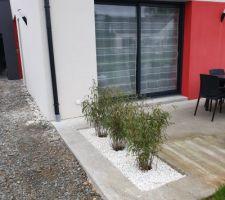 Bambous Étape 4:  Contempler!!! Encore! (Enfin pas la terrasse toute cracra à cause de la palette restée là un bon moment...)