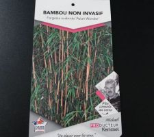 Bambous achetés