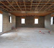 Pose des menuiseries et des rails placoplâtre (plafonds)