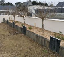 Parterres jardin terminés