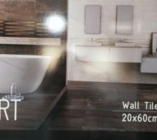 Choix carrelage SDB parents (sol marron chocolat, douche italienne avec mosaïque assortie au sol, idem pour le tour de la baignoire, mur en blanc cassé avec une bande verticale de carrelage ondulé même couleur dans la douche et baignoire)