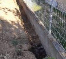 Tranchée le long du mur mitoyen au sud