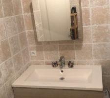 Salle de bain du bas vasque et placard mirroire