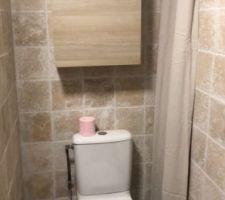 Salle de bain du bas Wc et placard deriere le rideau et placard sur le mur