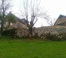 Muret en pierre