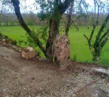 Plantage de menhirs