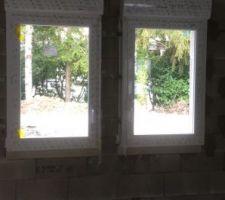 Quelque chose me turlupine , je trouve la hauteur des fenêtres juste sachant que le meuble de cuisine vient dessous .