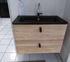 Modèle que l'on a choisi mais pour nous ce sera en simple grande vasque avec double robinnetterie.