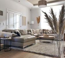 Salon avec herbes de la Pampa