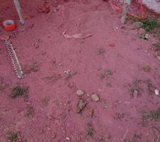 Enduit rouge carmine wb343 au sol. peut-être ce que cela donnera une fois l'enduit sec sur les murs...