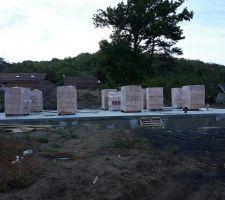Les briques sont arrivés hier. après un peu plus de 15 jours de sèche pour la dalle ( comme ont avait demandés )