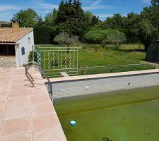 La piscine de la même couleur que l herbe