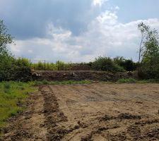 Nettoyage du talus et abbatage des arbres existants