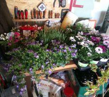 Aménagement terrasse et fleurissement.