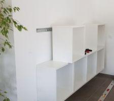Installation des premiers betsa