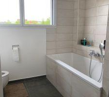 Photos et idées salle de bain sol gris foncé (1153 photos)